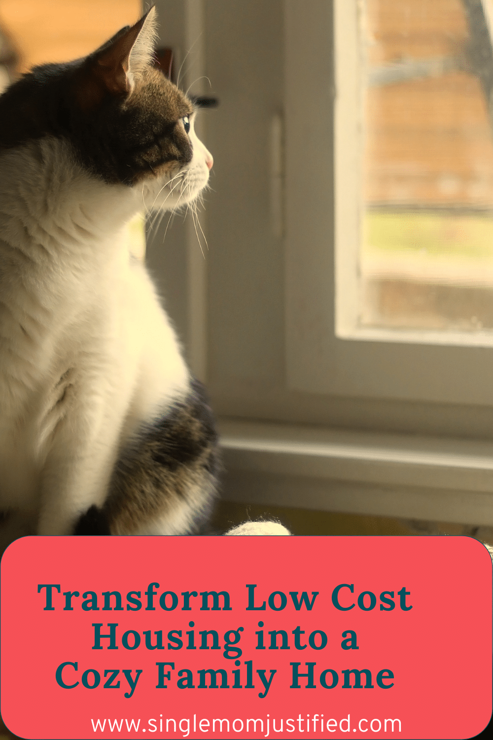 How to Make a Home Cozy On a Budget With Low Cost